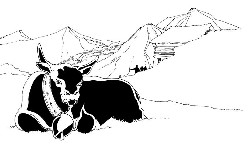 Le Glacier - Vache d'Hérens